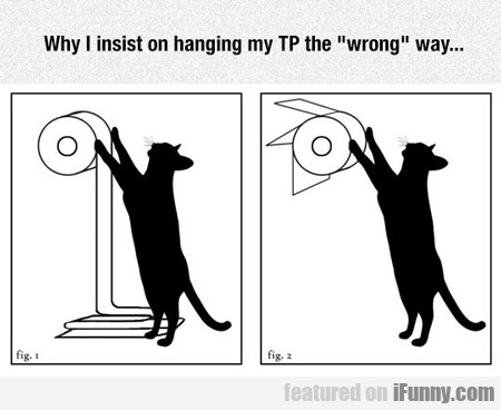 Why I Insist On Hanging My Tp...