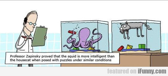 Professor Zapinsky Proved That The Squid...