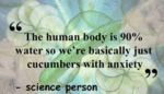 The Human Body Is 90% Water...