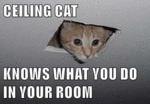 Ceiling Cat Knows What You Do
