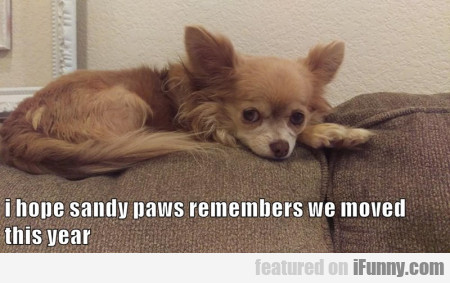I Hope Sandy Paws Remembers
