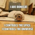 I Are Dunecat I Contols The Spice