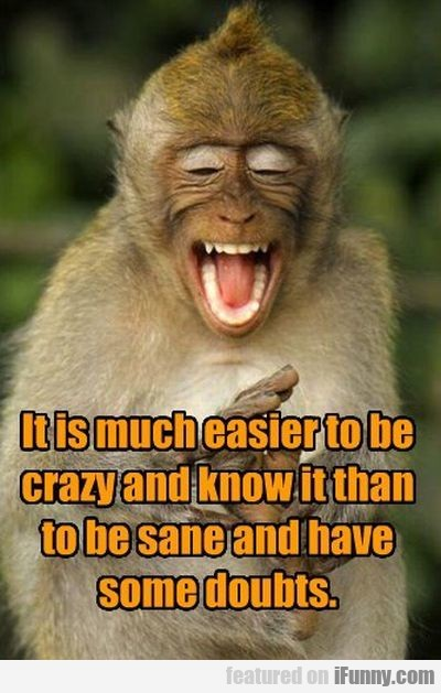 It Is Much Easier To Be Crazy