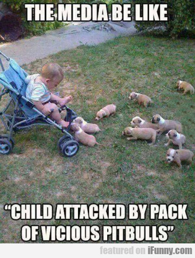 The Media Be Like Child Attacked By Pack