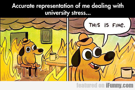 Accurate Depiction Of Me Dealing With University