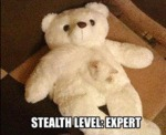 Stealth Level Expert...
