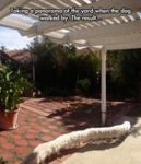 Taking A Panorama Of The Yard...