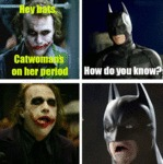 Hey Bats, Catwoman's On Her Period...