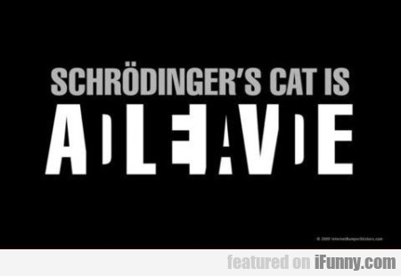 Schrodingers Cat Is Alive
