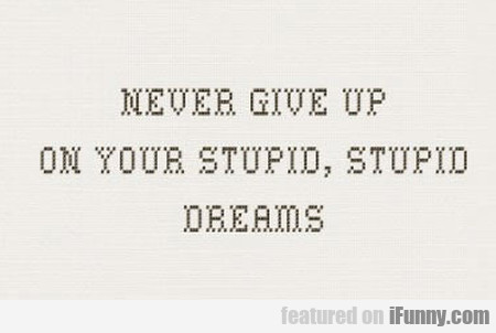 Never Give Up On Your Stupid Stupid Dreams