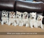 When Your Puppy Printer Runs Out