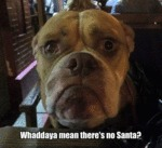 Whaddaya Mean Theres No Santa