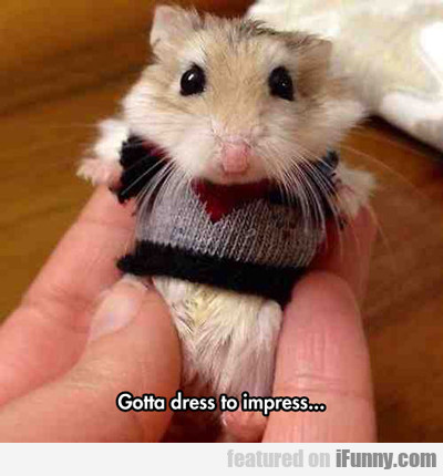 Go To Dress To Impress...