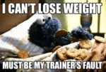 I Can't Lose Weight...