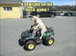 A New Take On The 'fetch' Game!