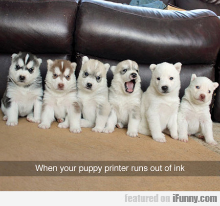 When Your Puppy Printer Runs Out Of Ink