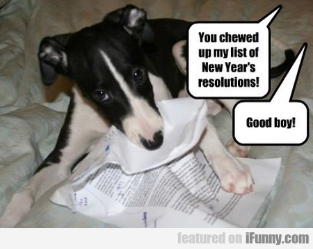 You Chewed Up My List Of New Year's Eve Resolution