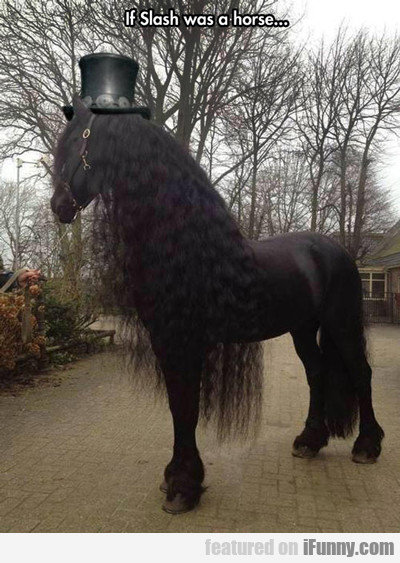 If Slash Were A Horse...