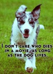 I Don't Care Who Dies In A Movie