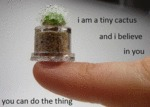 I Am A Tiny Cactus And I Believe In You...