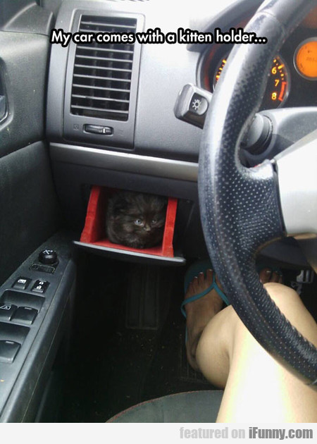 My Car Comes With A Kitten Holder