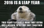 2016 Is A Leap Year...