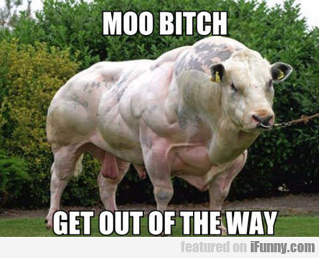 Moo Bitch, Get Out The Way...