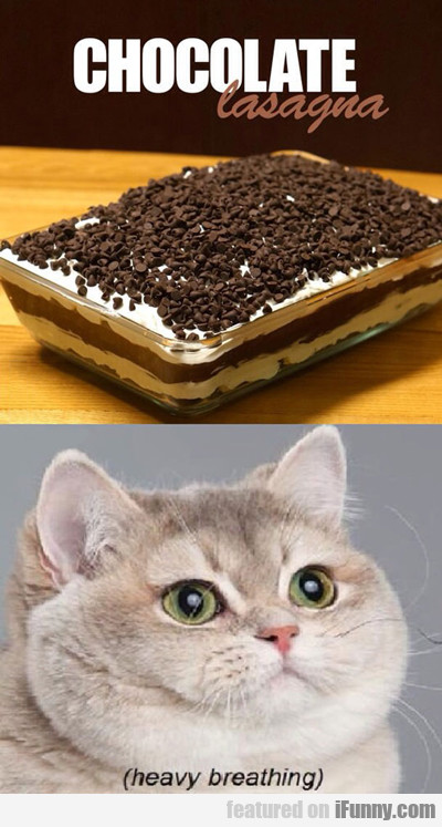 Chocolate Lasagna...