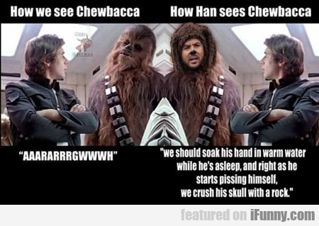 how we see chewbacca...