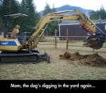 Mom, The Dog's Digging In The Yard Again...