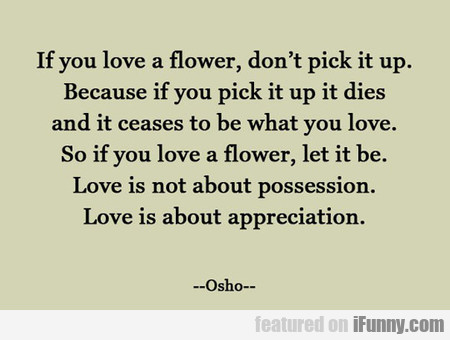 If You Love A Flower, Don't Pick It Up