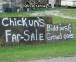 Only In Kentucky: Chickun's Far Sale...