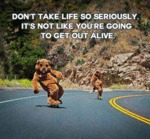 Don't Take Life So Seriously...