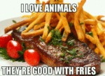 I Love Animals...