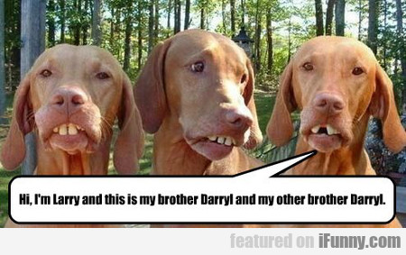 Hi, I'm Larry And This Is My Brother...