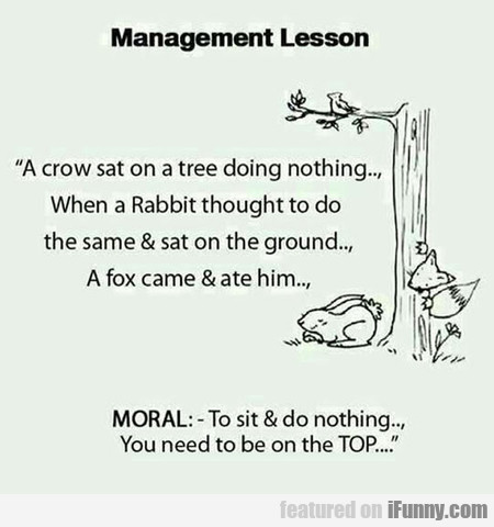 Management Lesson