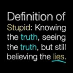 Definition Of Stupid Is
