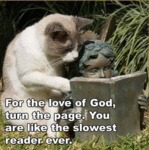 For The Love Of God, Turn The Page!