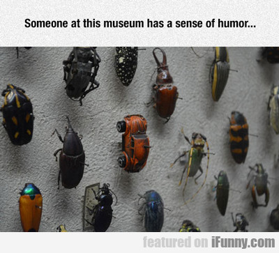 Someone At This Museum Has A Sense Of Humor...