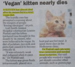 Vegan Kitten Nearly Dies