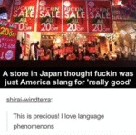 A Store In Japan...