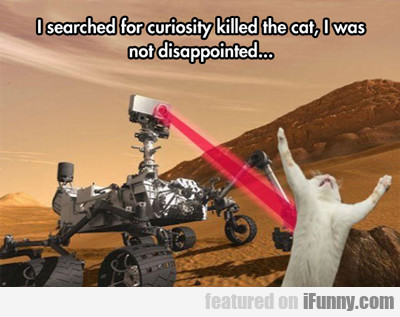 I Searched For Curiosity Killed The Cat...