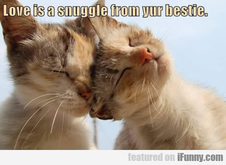 love is a snuggle from yur