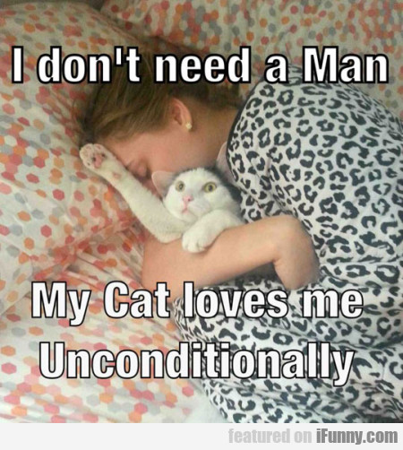i dont need a man my cat loves me
