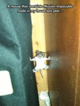A Mouse That Went Into Mission Impossible Mode...
