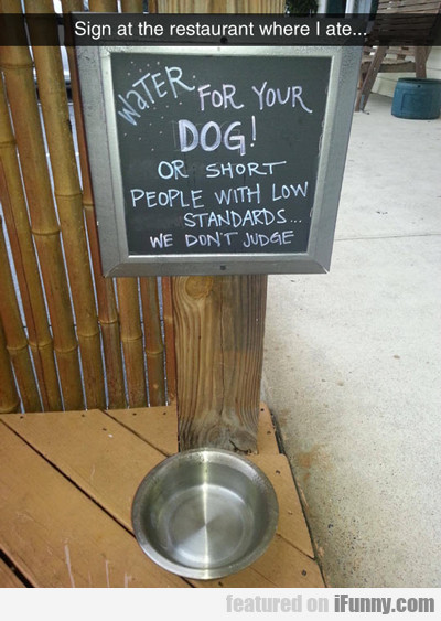 Water For Your Dog...