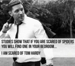 Studies Show That If You Are Afraid Of Spiders...