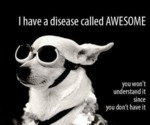 I Have A Disease Called Awesome