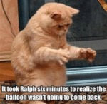 It Took Ralph Six Minutes To Realize