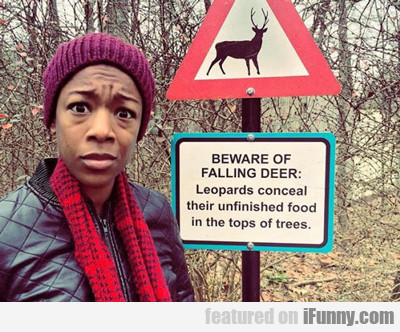 Beware Of Falling Deer...